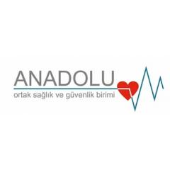 Anadolu Yönetsel Danışım İş Sağlık ve Güvenlik Hiz A.Ş.