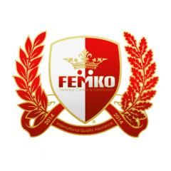 Femko Uluslararası Teknik Kontrol Ltd Şti