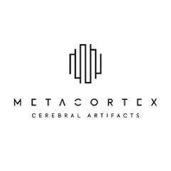 Metacortex Bilgi Teknolojileri San Tic Ltd Şti