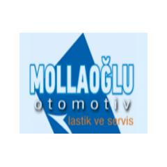 Mollaoğlu Otomotiv San ve Tic Ltd Şti