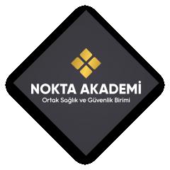 Nokta Akademi Eğitm Dan Teks San ve Tic Ltd Şti