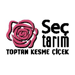 Seç Tarım Toptan Kesme Çiçekçilik