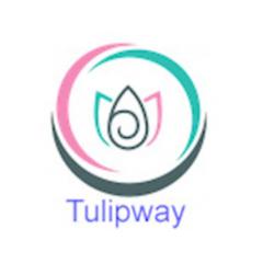 Tulipway Dijital Elektronik Paz Yön Dan Hiz Tic Ltd Şti
